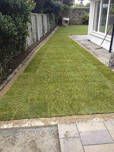 Instant Lawns Dublin