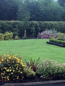 Landscaping Dublin, Kildare